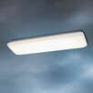 2 Light Flush Linear Strip Light