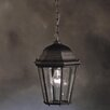 Townhouse 1 Light Outdoor Ceiling Pendant