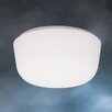 Ceiling Space 2 Light Flush Mount