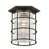 Troy Lighting Brunswick 1 Light Flush Mount