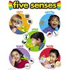 Trend Enterprises Chart Five Senses 17 X 22 Gr pk-2