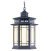 <strong>Livex Lighting</strong> Mirror Lake 1 Light Outdoor Hanging Lantern