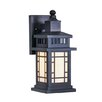 <strong>Livex Lighting</strong> Mirror Lake Outdoor Wall Lantern