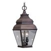 <strong>Livex Lighting</strong> Exeter 2 Light Outdoor Hanging Lantern