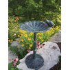 <strong>Frog Bird Bath</strong> by Oakland Living