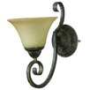 <strong>Yosemite Home Decor</strong> Mariposa 1 Light Wall Sconce