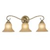 <strong>Monrovia 3 Light Vanity Light</strong> by Vaxcel