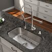 "Vigo Platinum 30"" x 18"" All in One Undermount Kitchen Sink with Faucet"