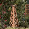 Buyers Choice Phat Tommy Coppertop Trellis