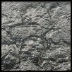 """<strong>2"""" x 2"""" Glass Tile in Platinum</strong> by JSG Oceana"""