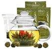 Primula Tea Experience Gift Set