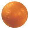 <strong>Inflatable Exercise Ball</strong> by Cando