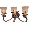 <strong>Tofino 3 Light Vanity Light</strong> by Minka Lavery