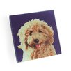 Naked Decor Labradoodle Coaster (Set of 4)