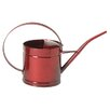 Houston International Watering Can (Set of 12)