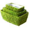 <strong>SuperMoss™</strong> Shasta Moss Basket (Set of 3)