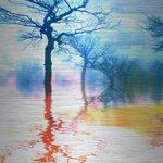 Parvez Taj Colorful Reflections Graphic Art Plaque