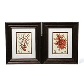 Red Coral I / III Framed Art (Set of 2)