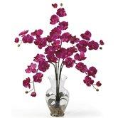 Faux Plants + Florals