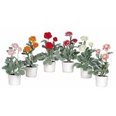 Ranunculus Flower with White Vase (Set of 6)