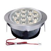 Tiro12 Twelve Light Directional Downlight with Source