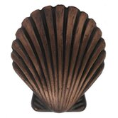Cabinetry Hardware Solid Brass Seashell Shaped Knob