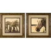 Portrait of a Horse Framed Prints
