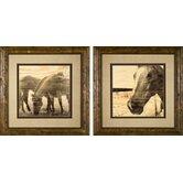 Portrait of a Horse Framed Prints
