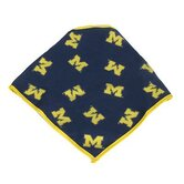NCAA Dog Bandana