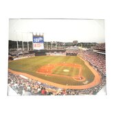 MLB Stadium Canvas Wall Art