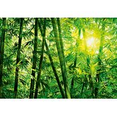 Ideal Decor Bamboo Forest Wall Mural