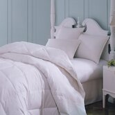 Majestic Cotton Goose Down Comforter in White