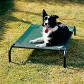 Elevated Indoor/Outdoor Pet Cot for Medium Breeds