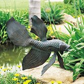 Fighting Fish Statuary