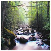 "River of Life Canvas Wall Art - 19.75"" x 19.75"""