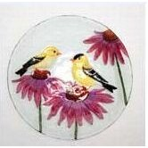Bird Bath Finches on Glass