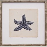 Mini Indigo Starfish IV Art