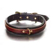 Tucker Overlay Dog Collar