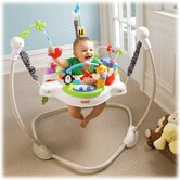 Fisher-Price Bouncers, Swings & Rockers