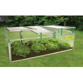 BioStar Polycarbonate Cold Frame Greenhouse