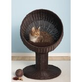 Kitty Ball Rattan Cat Bed in Espresso