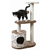 Trixie Pet Products Cat Condos & Cat Trees