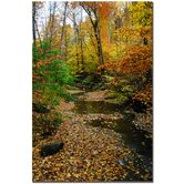 "Autumn Stream by Kurt Shaffer, Canvas Art - 24"" x 16"""
