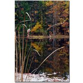 "Serene Sylvan Pond by Kurt Shaffer, Canvas Art - 24"" x 16"""