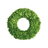 Boxwood Single Side Round Wreath