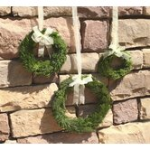 Cypress Round Wreath (Set of 3)