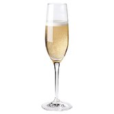 Fusion Deco Champagne Coupe Glass
