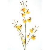 Distinctive Designs Faux Florals & Wreaths