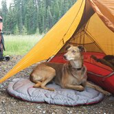 RuffWear Dog Beds