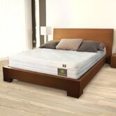 Cotton Comfort Latex Foam Mattress
